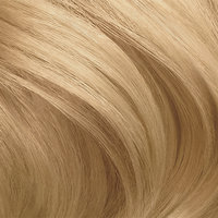Clairol Nice 'n Easy Hair Color 9.5A Light Cool Breezy Blonde 1 Kit