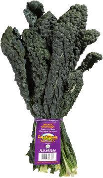 Cal-Organic® Farms Organic Lacinato Kale Bundle