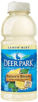 Deer Park Nature's Blend Spring Water & Real Juice Lemon-Mint 20 fl. oz. Plastic Bottle