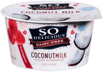 So Delicious® Dairy Free Coconut Milk Raspberry Yogurt Alternative 5.3 oz. Tub