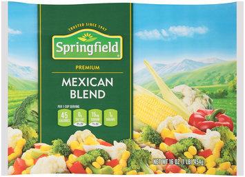Springfield® Mexican Blend 16 oz. Bag