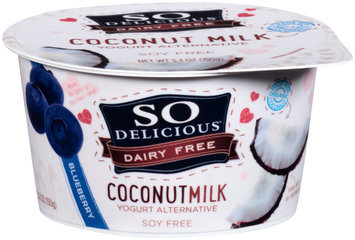 So Delicious® Dairy Free Coconut Milk Blueberry Yogurt Alternative 5.3 oz. Tub