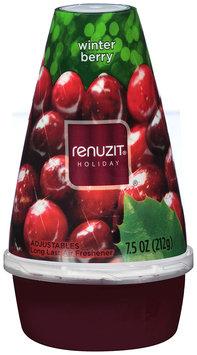 Renuzit® Holiday Winter Berry Long Last Adjustable Air Freshener