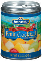 Springfield Premium In Heavy Syrup Fruit Cocktail 8.75 Oz Can
