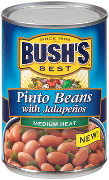 Bush's Best® Medium Heat Pinto Beans with Jalapenos 16 oz. Can