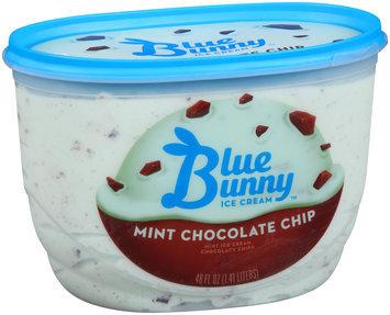 Blue Bunny Ice Cream Mint Chocolate Chip