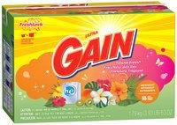 Gain® Ultra Island Fresh with FreshLock HE Powder Laundry Detergent 63 oz. Box