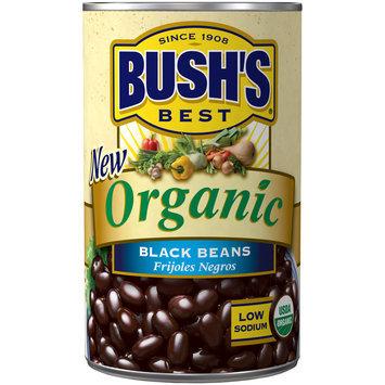 Bush's® Best Organic Black Beans 15 oz. Can