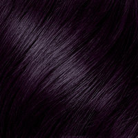Pro Series Vidal Sassoon Pro Series London Luxe Hair Color 2VC Oxford Violet Onyx 1 Kit