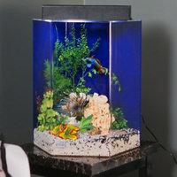 Advance Aqua Tanks Clear For Life Hexagon Aquarium Sapphire Blue, Size: 75-Gal (25W x 30H in.)