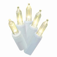Holiday Time Clear LED Mini Lights, 50 Count