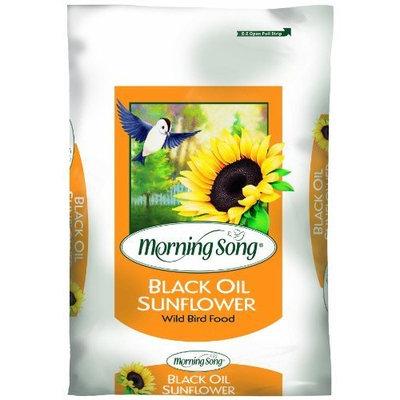 Morning Song 1015170 Black Oil Sunflower, 50-Pound