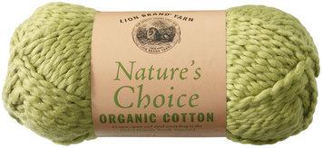 Lion Brand Nature's Choice 100% Cotton Yarn - Pistachio