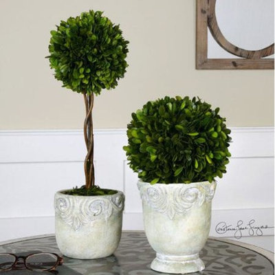 Uttermost Preserved Boxwood Ball Topiaries (Set of 2)
