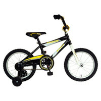 Cycle Force Mantis Boy's Burmeister 16