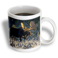 Recaro North 3dRose - VWPics Nature - Bull moose in early morning light and frost in Riding Mountain National Park, Manitoba, Canada - 15 oz mug