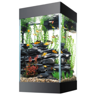 AqueonA 15 Gallon Column Deluxe Aquarium Kit