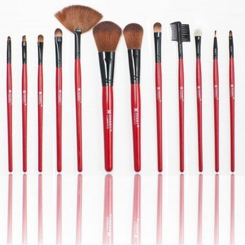 Shany Cosmetics SHANY Professional 12 - Piece Natural Goat and Badger Cosmetic Brush Set with Pouch - Red