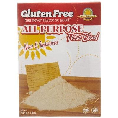 Kinnikinnick All Purpose Flour Mix, Gluten Free, 16-Ounce (Pack of 3)