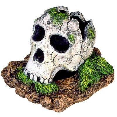Blue Ribbon Exotic Environments Broken Skull Aquarium Ornament, Small, 5-Inch by 3-1/2-Inch by 4-Inch