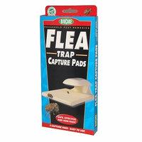 Springstar Flea Trap Capture Pad