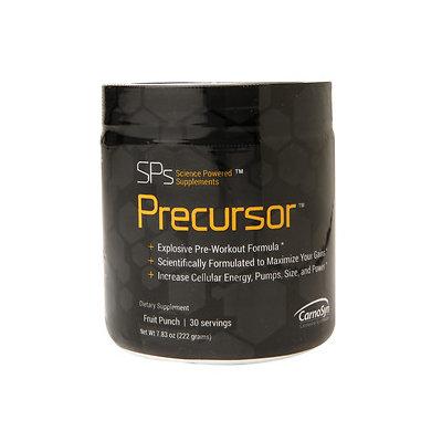SPs Precursor - Fruit Punch