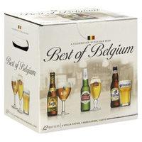 Anheuser Busch Best of Belgium Beer Bottles 12 oz, 12 pk