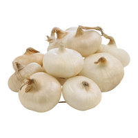 Onions Cipollini