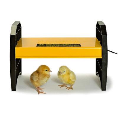 Brinsea EcoGlow 20 Chick Brooder - USHD500