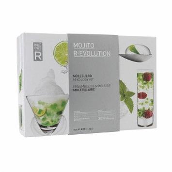 Molecule-R Mojito R-EVOLUTION Mixology Kit, 1 ea