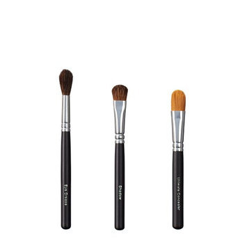 ON&OFF Trio Eye Crease/Shadow and Ultimate Concealer Brush