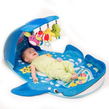 Infantino Wonder Whale Kicks And Giggles Gym