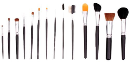 Crown Brush Deluxe Studio Brush Set Reviews 2019