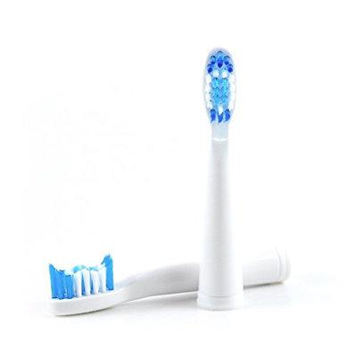 Pop Dental GoSonic brush heads 2-pack