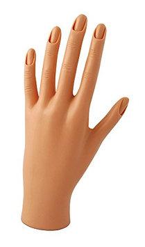 Diane Practice Mannequin Hand