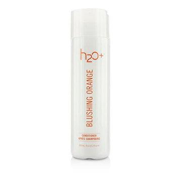 H2O Plus Blushing Orange Conditioner