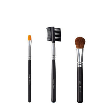 ON&OFF Trio Cover/Groom Tool and Blender Brush
