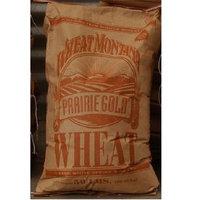 Wheat Montana BG19606 Wheat Montana Pg Hrd Wht Berrie - 1x50LB