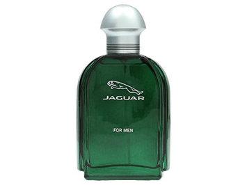 Jaguar By Jaguar