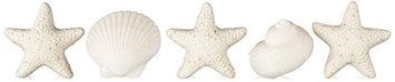 Gianna Rose Seashell Soaps in Slider Box