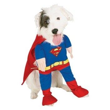 Buy Seasons Superman 2005 Pet Costume - XL
