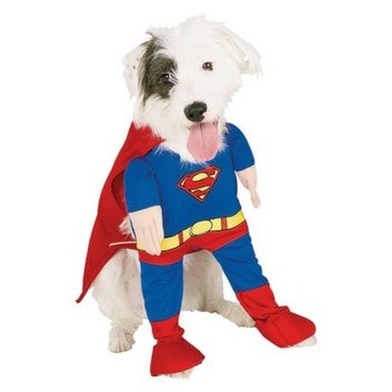 Buy Seasons Superman 2005 Pet Costume - XL
