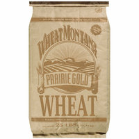 Wheat Montana : Prairie Gold Hard White Spring Wheat