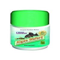 Ocean Nutrition Algae Wafers -- 5.29 oz