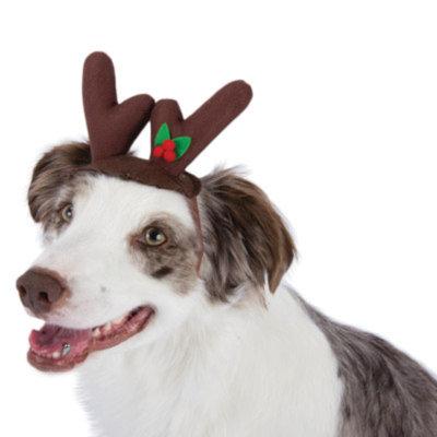 Top PawA Pet HolidayTM Reindeer Ears