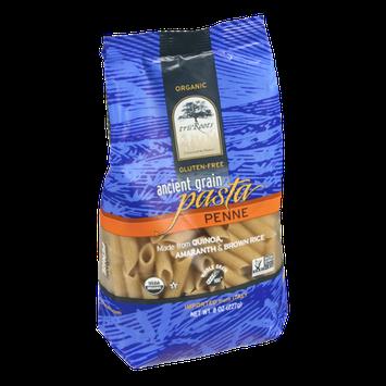 TruRoots Ancient Grain Pasta Gluten-Free Penne