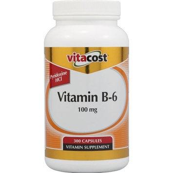 Vitacost Brand Vitacost Vitamin B-6 -- 100 mg - 300 Capsules