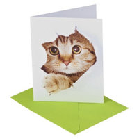 American Greeting Thank You Card Pack 10 Count CARLTON Thank You