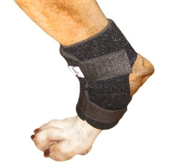 Walkin' Wheels Walkin' Hock Holder for Dogs Rear Leg Canine Small