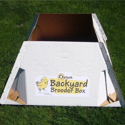 High Country Plastics Inc Backyard Brooders Box